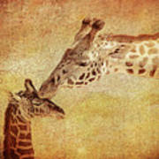 A Mother's Kiss Painted 2 Art Print