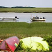 A Nauset Marsh View Art Print