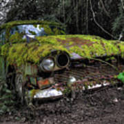 A Non Rolling Car Gathers Some Moss Art Print