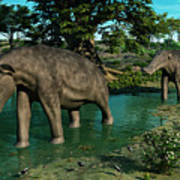 A Pair Of Platybelodon Grazing Print by Walter Myers