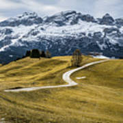 A Path In The Dolomites - Alta Badia, Italy - Landscape Photogra Art Print