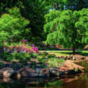 A Peaceful Feeling At The Azalea Pond Art Print