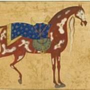 A Piebald Stallion Art Print