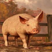 A Pig In Autumn Art Print