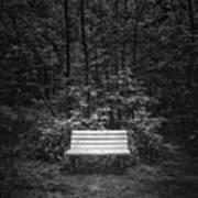 A Place To Sit Art Print