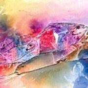 A Rainbow Of Salmon Art Print