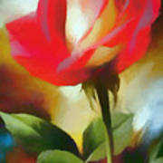 A Red Rose For Amelia Art Print