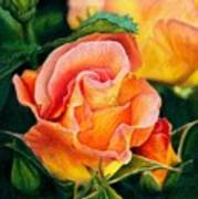 A Rose For Nan Art Print