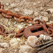 A Rusty Chain And Hook Art Print