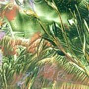 A Secret Forest Art Print