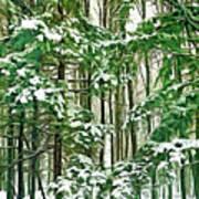 A Snowy Day - Paint Art Print