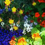 A Spring Garden Medley Art Print