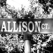 Al - A Street Sign Named Allison Art Print
