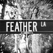 Fe - A Street Sign Named Feather Art Print
