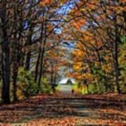 A Stroll Through Autumn Colors Art Print