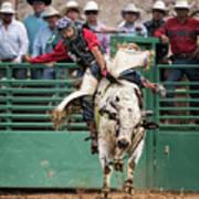 A Strong Bull Ride Art Print