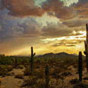 A Summer Evening In The Sonoran  Art Print