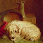 A Terrier Art Print by John Fitz Marshall