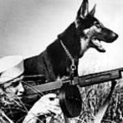 A Trained German Shepherd Sitting Watch Print by Everett