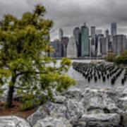 A Tree Grows In Brooklyn Looking At Manhattan Art Print
