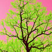 A Tree Grows In Vegas Art Print
