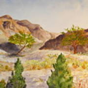 A View At Red Rock Art Print