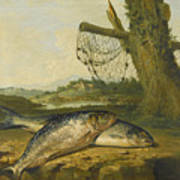 A View On The River Derwent At Belper Derbyshire With A Salmon And A Grayling On The Bank Art Print