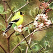 A Vision Of Spring Art Print