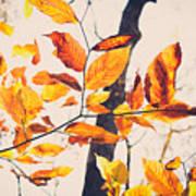A Walk In Fall Art Print