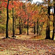 A Walk Through Autumn  Art Print