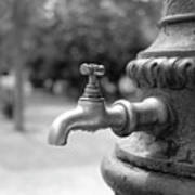 A Water Tap In The Park Art Print