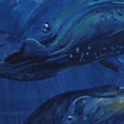 A Whale Of A Tail Art Print