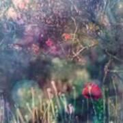 Abandoned Garden II Art Print