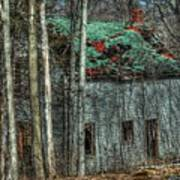 Abandoned In The Woods. Art Print