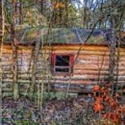 Abandoned Log Cabin Art Print