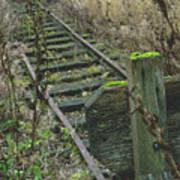 Abandoned Miniature Railway Art Print