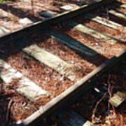 Abandoned Railtracks Art Print