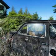 Abandoned Vehicles - Veicoli Abbandonati  2 Art Print