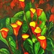 Abstract Arum Lilies Art Print