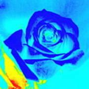 Single Blue Rose Abstract Art Print