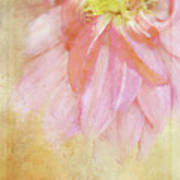 Abstract Dahlia In Pink Art Print