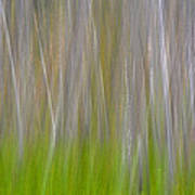 Abstract Forest 2 Art Print