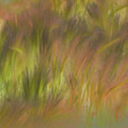 Abstract Grasses Art Print by Ron Hoggard