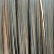 Abstract Lodgepole Pine 2 Art Print