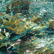 Abstract Of The Underwater World. Production By Nature Art Print