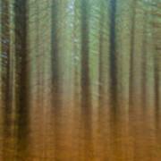 Abstract Pines Art Print