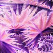 Abstract Purple Flowers Art Print