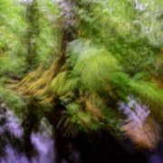 Abstract Rain Forest Art Print