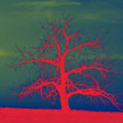Abstract Single Tree Red-blue-green Art Print