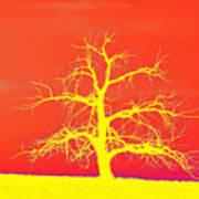 Abstract Single Tree Yellow-orange Art Print